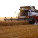 Сельскохозяйственное предприятие в Волынской области