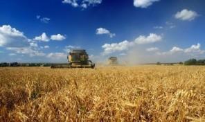 Сельскохозяйственное предприятие во Львовской области